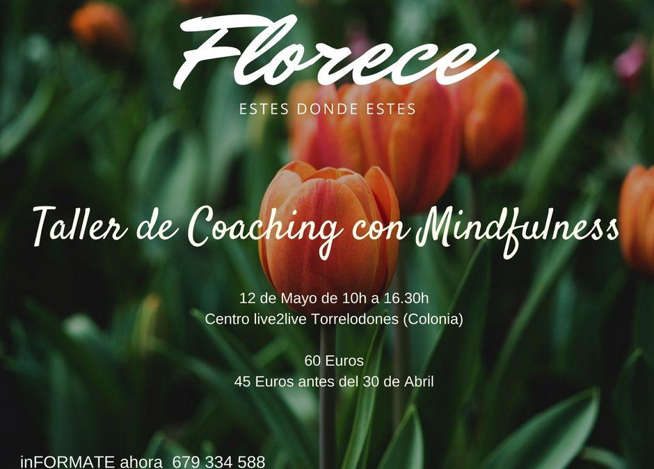 Taller de Coaching con Mindfulness en Torrelodones