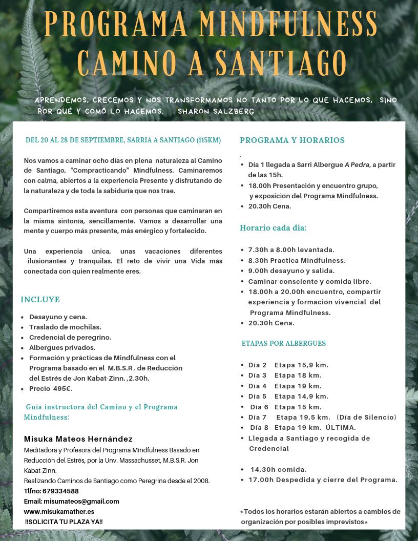 Resumen Camino de Santiago