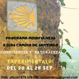 Camino de Santiago y mindfulness