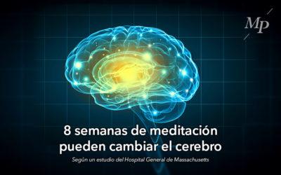 ¿Por qué funciona la meditación? Pablo Roca